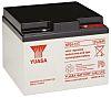 Yuasa NP24-12I Lead Acid Battery - 12V, 24Ah