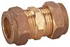 Conex-Banninger 12mm Straight Coupler Brass Compression Fitting