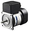 DKM Reversible Induction AC Motor, 90 W, 1