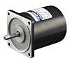 DKM Reversible Induction AC Motor, 40 W, 1