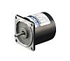 DKM Reversible Induction AC Motor, 6 W, 1
