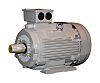 TECO Westinghouse ALDA Induction AC Motor, 15 kW,