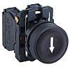 Schneider Electric, Harmony XB5 Black Flush Push Button,