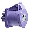 ABB, Easy & Safe IP44 Purple Panel Mount