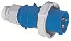 Bals IP67 Blue Cable Mount 2P+E Industrial Power