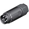 Wieland, RST16i2/3 Male 5 Pole Mini Connector, Cable