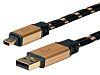 Roline Male USB A to Male Mini USB