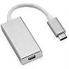 Roline Male USB C to Female Mini DisplayPort