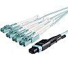 Startech Multi Mode Fibre Optic Cable MTP/MPO to