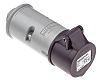 MENNEKES IP44 Purple Cable Mount 2P Industrial Power