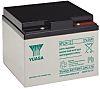 NPL24-12 Lead Acid Battery - 12V, 24Ah