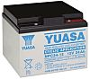 NPC24-12 Lead Acid Battery - 12V, 24Ah