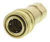 Parker Brass Female Hydraulic Quick Connect Coupling BH8-60BSPP