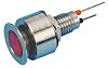 Marl Red Indicator, Lead Pins Termination, 12 V
