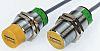 Turck M12 x 1 Inductive Sensor - Barrel,