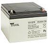 Y24-12IFR Lead Acid Battery - 12V, 24Ah