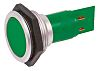 Signal Construct Green Indicator, Tab Termination, 24 → 28 V, 30mm Mounting Hole Size