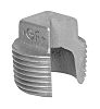 Georg Fischer Malleable Iron Fitting Plain Plug, 1