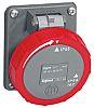 Legrand 32A Red Plastic Industrial Socket, IP44