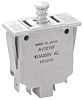 DPDT-NO Safety Interlock Switch, 10.1 A @ 250