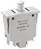 DPDT-NO Safety Interlock Switch, 10.1 A @ 250 V ac