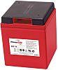 Enersys RSAMP3735 Lead Acid Battery - 6V, 110Ah