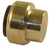 Pegler Yorkshire Brass Push Fit Fitting 22mm