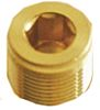 Kopex Stopping Plug Cable Gland, Brass 25mm nominal