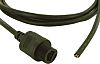 Amphenol Black Plastic Cat5 Cable Unshielded, 2m Female