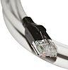 Bel-Stewart Grey Cat5e Cable Unshielded, 3m Male RJ45/Male