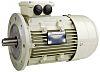 TECO Westinghouse ALDA Reversible Induction AC Motor, 7.5