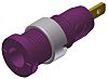 Hirschmann Test & Measurement Violet Female Banana Plug