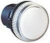 Allen Bradley White Pilot Light Head, 22mm Cutout