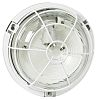 Legrand Round Incandescent Bulkhead Light, 100 W, Lamp