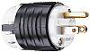 PASS & SEYMOUR USA Mains Plug NEMA 5-15P, 15A, Cable Mount, 125 V ac