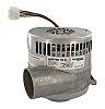 Ametek Centrifugal Fan, 455.33m³/h, 240 V ac ac