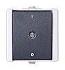 Grey Intermediate IP44 Light Switch Light Grey, 1
