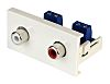 Double Gang 2 Way Female RCA Faceplate