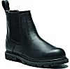 Dickies Fife II Black Steel Toe Cap Safety