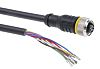 Turck Cable assembly