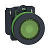 Schneider Electric XB5 Illuminated Green Push Button SPDT